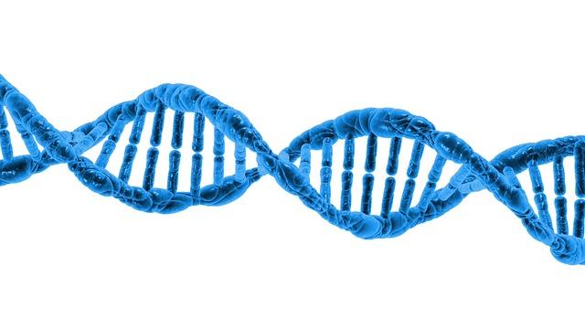 ondes et ADN